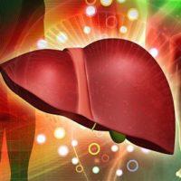 Симптомы и методы лечения стеатогепатоза